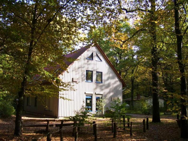 waldschule pl nterwald kindergeburtstag f r schulkinder top10berlin. Black Bedroom Furniture Sets. Home Design Ideas