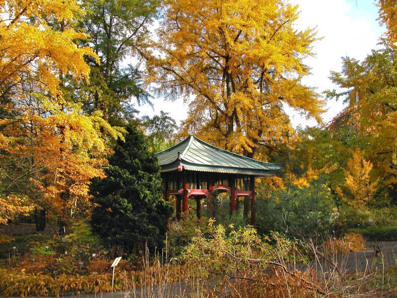 Botanischer Garten Dahlem Herbstaktivitäten Top10berlin