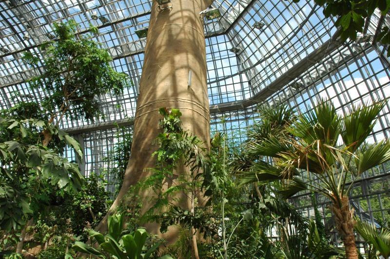 Tropenhaus Im Botanischen Garten Orte Für Das Erste Date Top10berlin