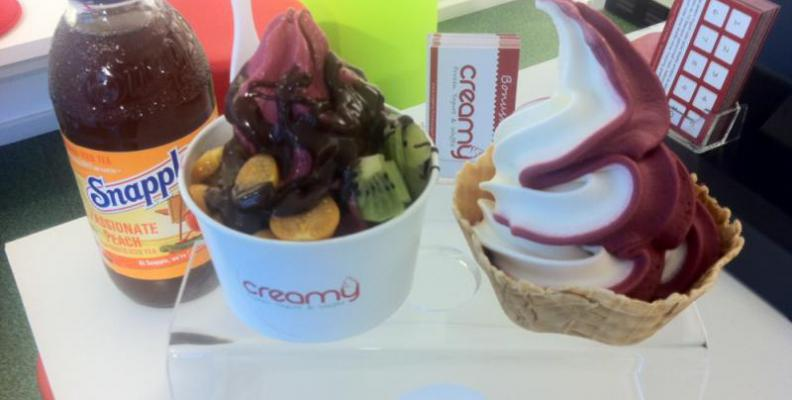 Foto: Creamy Frozen Yogurt & Waffle