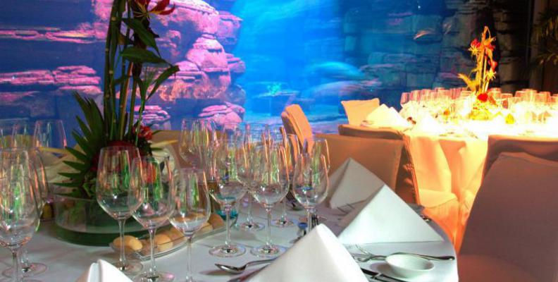 candlelight dinner im zoo aquarium candle light dinner f r verliebte top10berlin. Black Bedroom Furniture Sets. Home Design Ideas