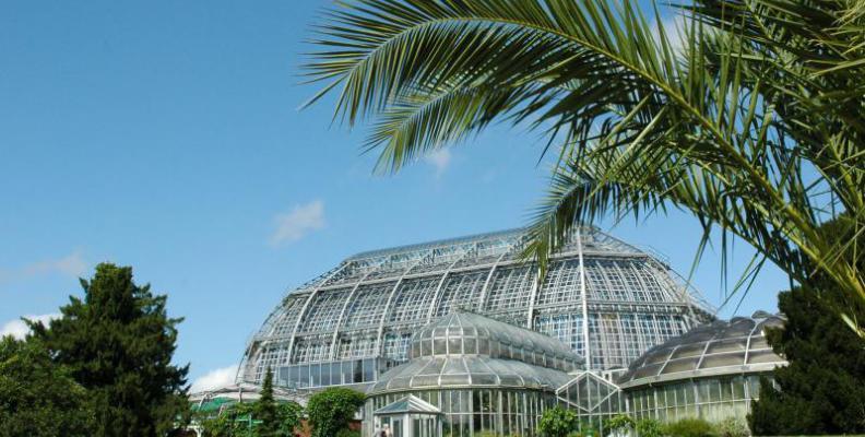 Foto: I. Haas, Botanischer Garten und Botanisches Museum Berlin-Dahlem