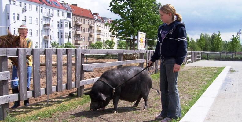 Foto: Jugendfarm Moritzhof