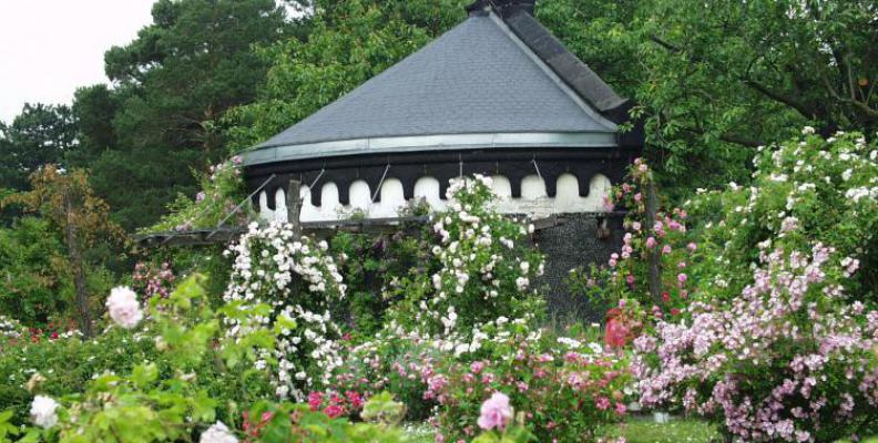 Foto: I. Haas  Botanical Gardens and the Botanical Museum in Berlin