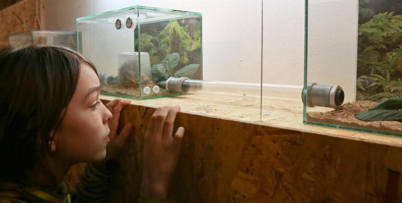 Foto: MACHmit! Museum für Kinder