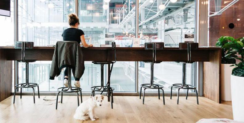 wework im sony center co working spaces top10berlin. Black Bedroom Furniture Sets. Home Design Ideas