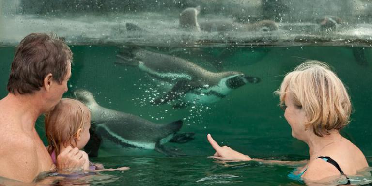 Foto: Spreewelten Bad