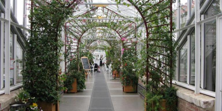 Foto: Königliche Gartenakademie|Isabelle Van Groeningen