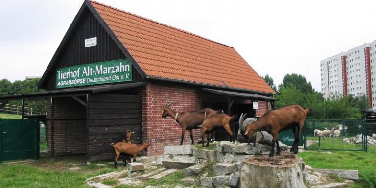 Foto: Tierhof Alt-Marzahn
